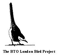 London Bird Project Logo