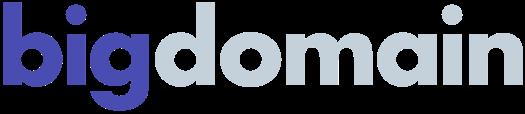 Big Domain logo