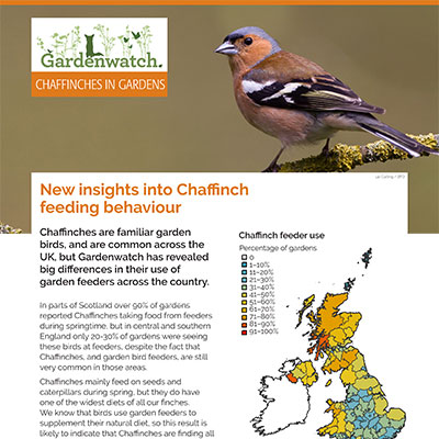 Gardenwatch - Chaffinch guide cover
