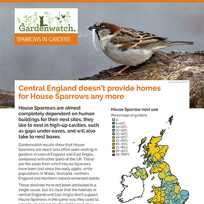 Gardenwatch - House Sparrow guide cover