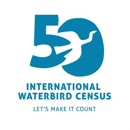 International Waterbird Census 50th Anniversary