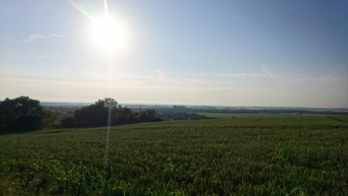Agricultural land, Cambridgeshire. Ailidh Barnes