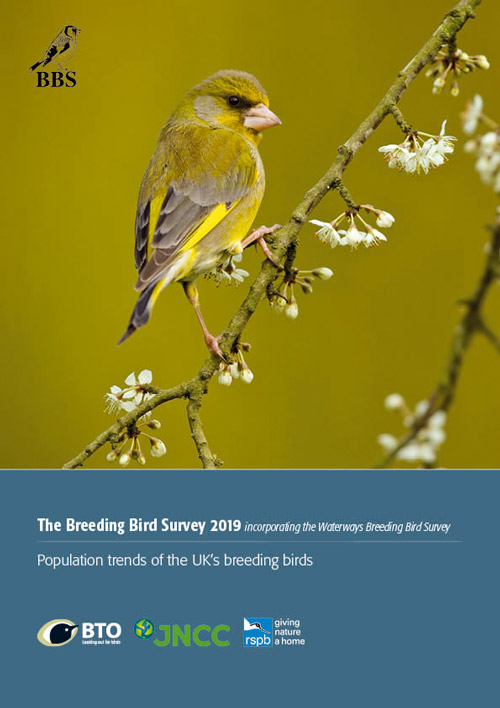BBS report 2019 cover