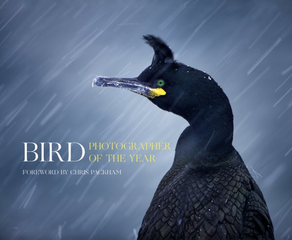 Bird Photographer of the Year 2016 cover