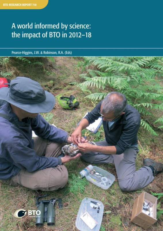 BTO Research Report 710 cover