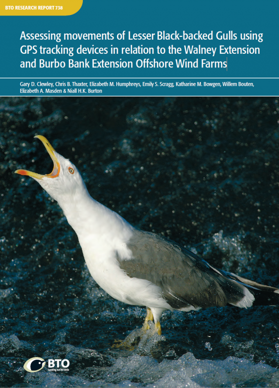 BTO Research Report 738 cover