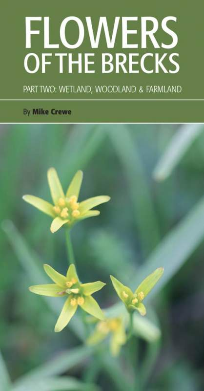 Flowers of the Brecks cover
