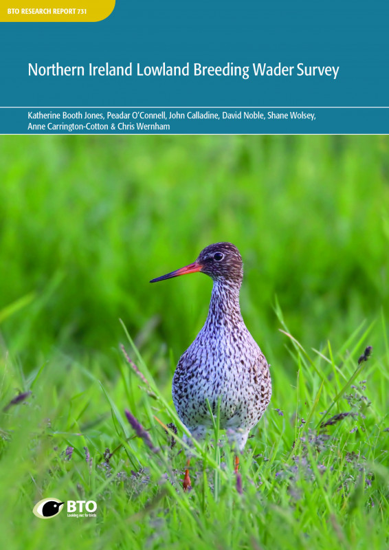 Northern Ireland Lowland Breeding Wader Survey (cover)