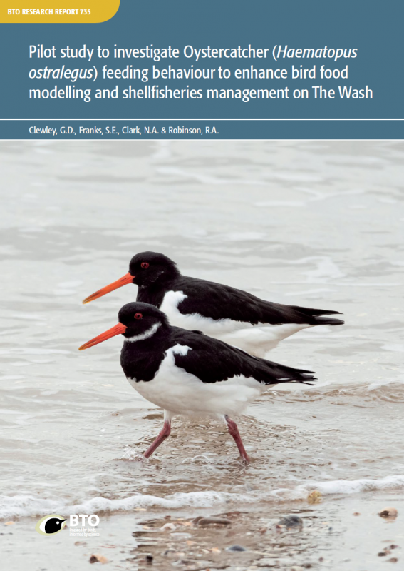 BTO Research Report 735 cover
