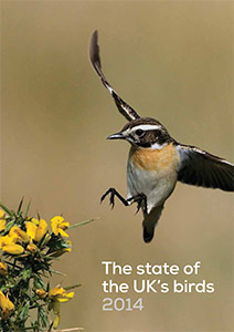 State of UK Birds 2014 cover