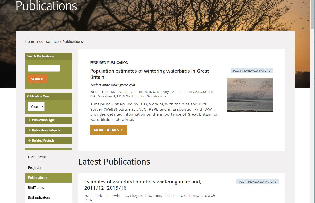 Revised website - publications page