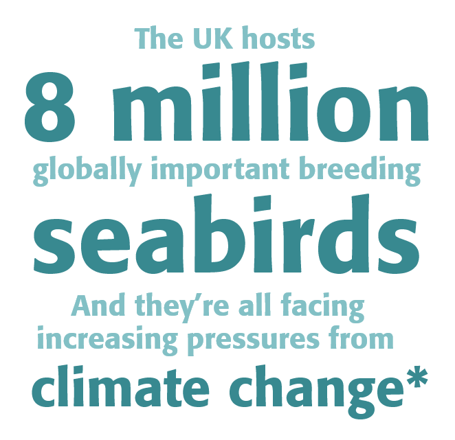 The UK hosts 8 million globally important breeding seabirds and they're all facing increasing pressures from climate change