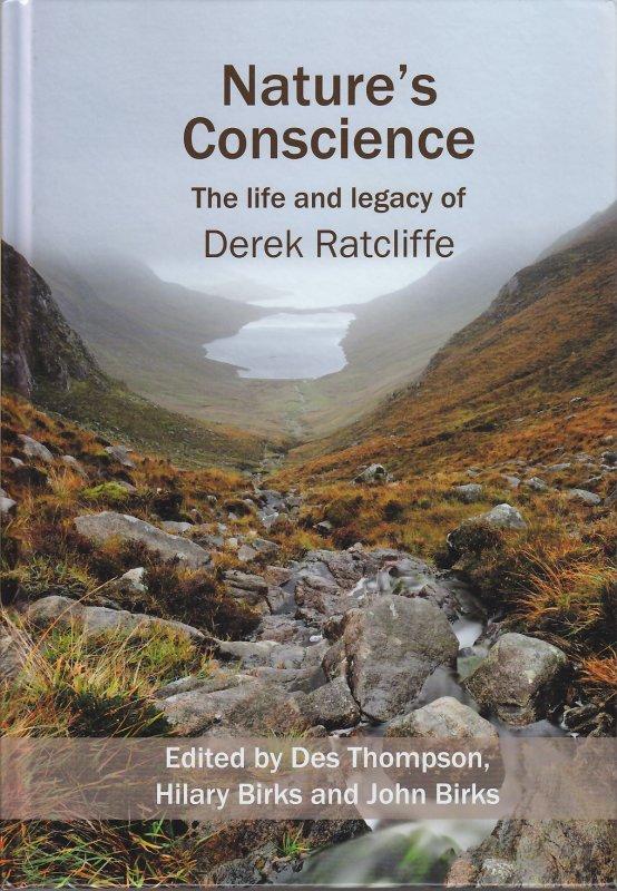 CONSCIENCE Sermon Illustrations