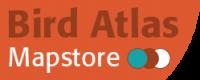 Mapstore logo