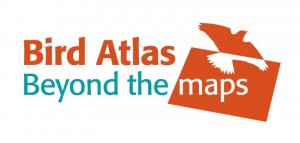Bird Atlas - Beyond the maps