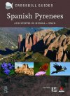 Spanish Pyrenees – and steppes of Huesca, Spain.