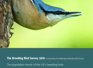 Breeding Bird Survey Report