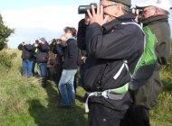 Birding at Spurn