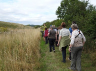 BTO Guided Walk at Birdfair