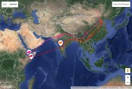 Chinese Cuckoo journeys