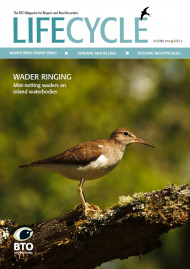 Life Cycle Issue 4 cover image