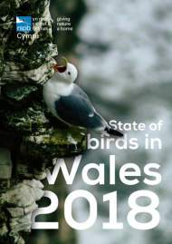 State of Birds in Wales 2018 cover