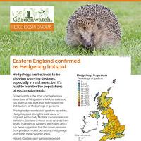 Gardenwatch - Hedgehog guide cover