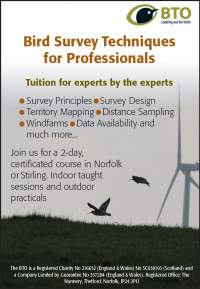 Professional course advert