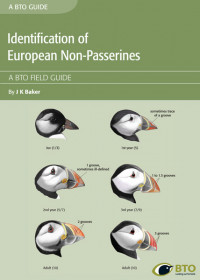 Identification of European Non-Passerines cover