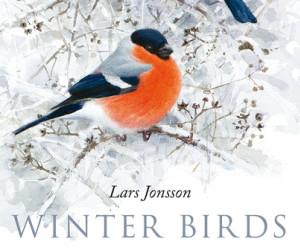 Winter Birds by Lars Jonsson