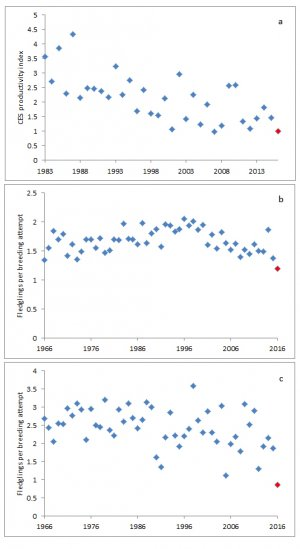 Graphs showing CES productivity for Blue Tit and FPBA for Blackbird and Reed Bunting.