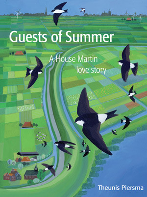Guests of Summer book front cover