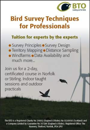 Professional training course advert