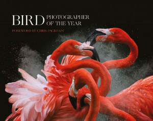 Bird Photographer of the Year 2018 cover