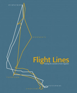 Flight Lines: Tracking the wonders of bird migration