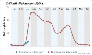 Chiffchaff reporting rate