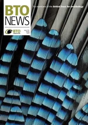 BTO News 330, Spring 2019