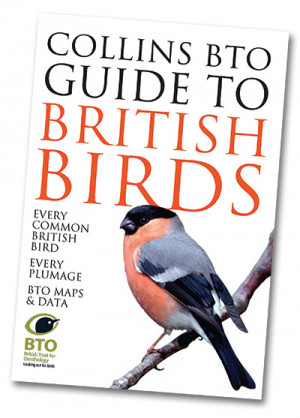 Collins Bto Guide To British Birds Bto British Trust For Ornithology