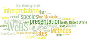 Major words/themes of WeBS methods & analysis