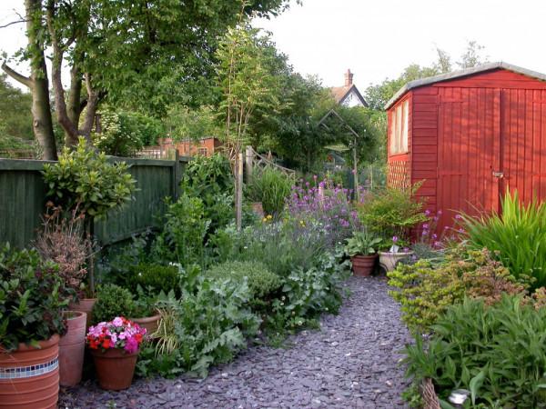 Urban garden, Mike Toms.