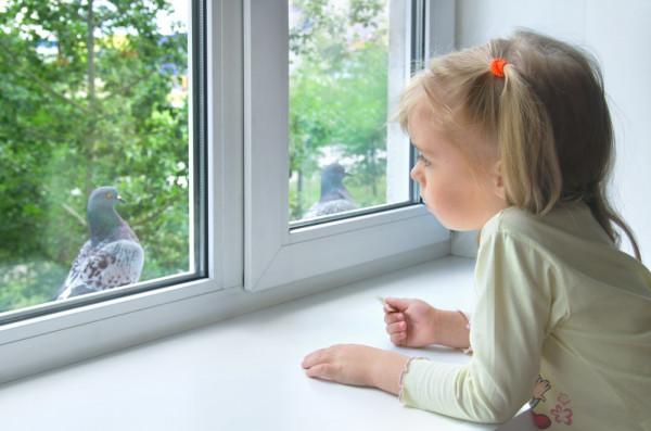 Girl looking at pigeon, Leonid Ikan / stock.adobe.com