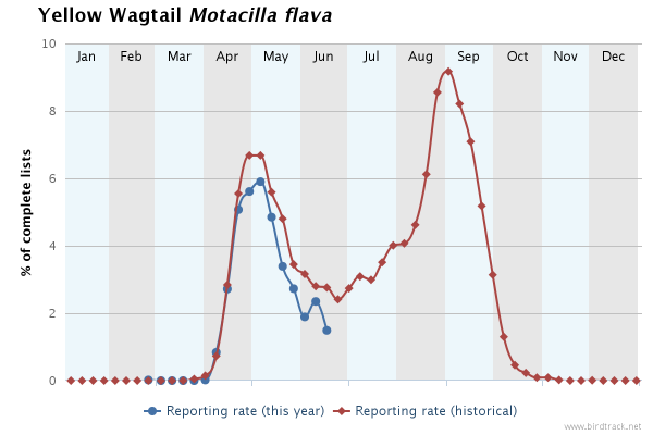 Yellow Wagtail Birdtrack Reporting Rate - June 2016