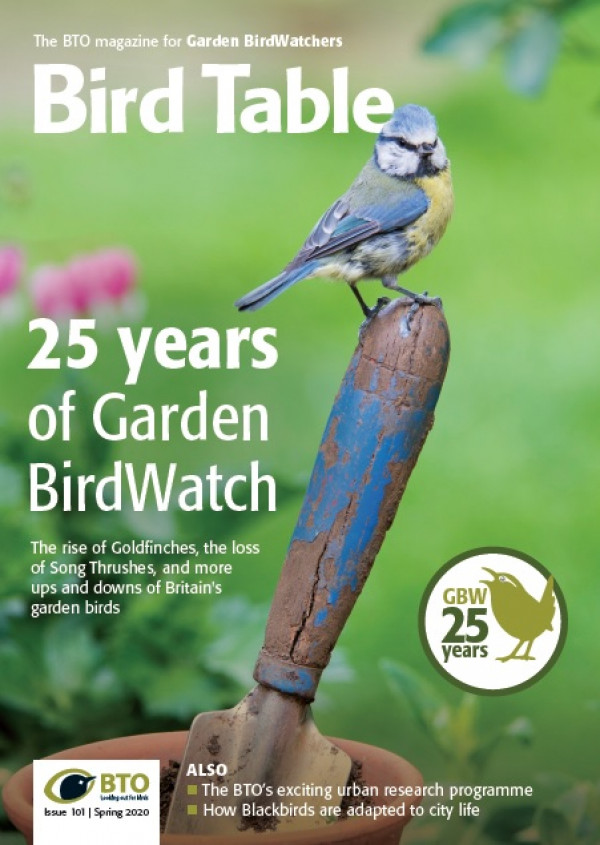 Bird Table magazine