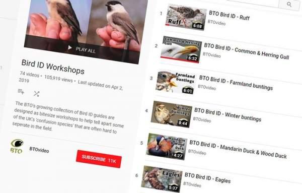 BTO Bird ID video playlist on Youtube