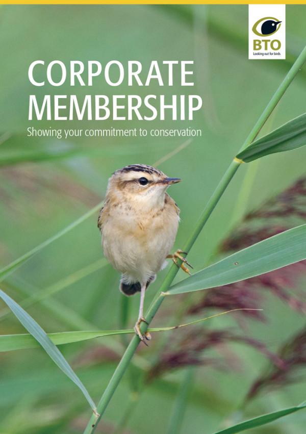 BTO Corporate Membership Brochure
