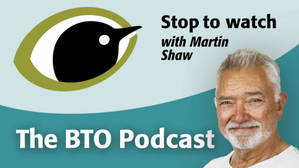 Stop to watch podcast with Martin Shaw