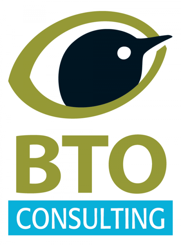 BTO Consulting logo