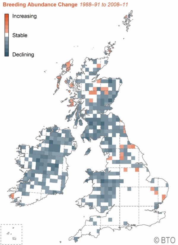 Breeding abundance change map for Curlew