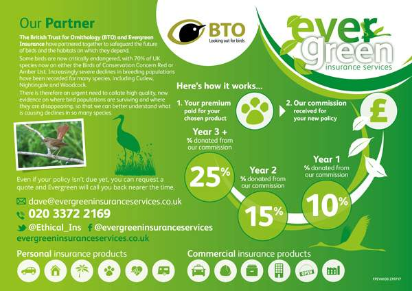 Evergreen charity partnership infographic
