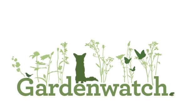BBC Gardenwatch